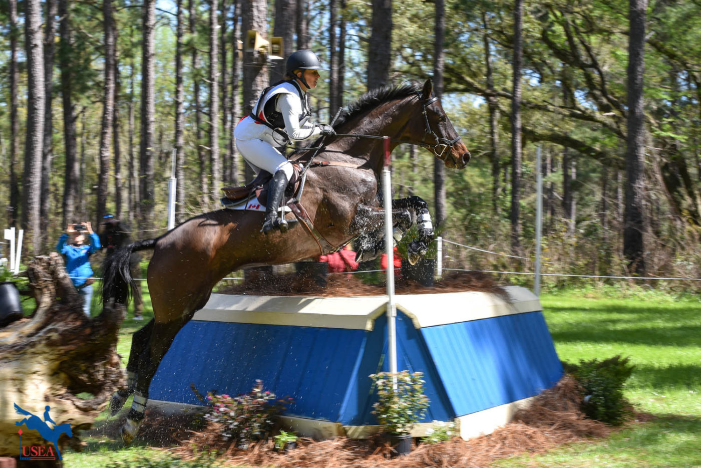 Jessica Phoenix and Pavarotti sit in 6th place. USEA/Kate Lokey photo.