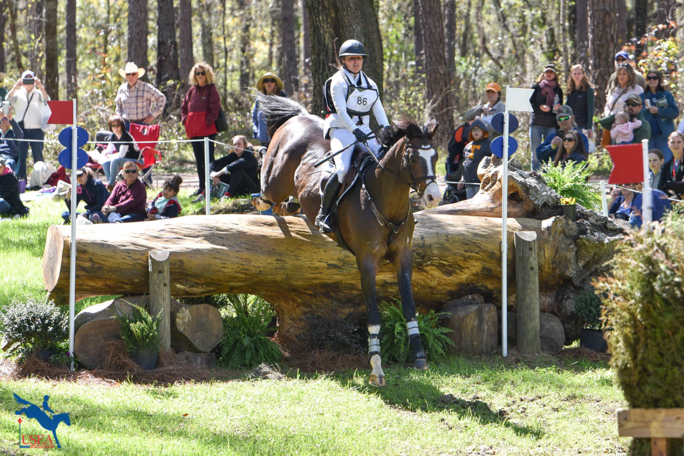 Jessica Phoenix and Humble GS sit in 8th after cross-country. USEA/Kate Lokey photo.
