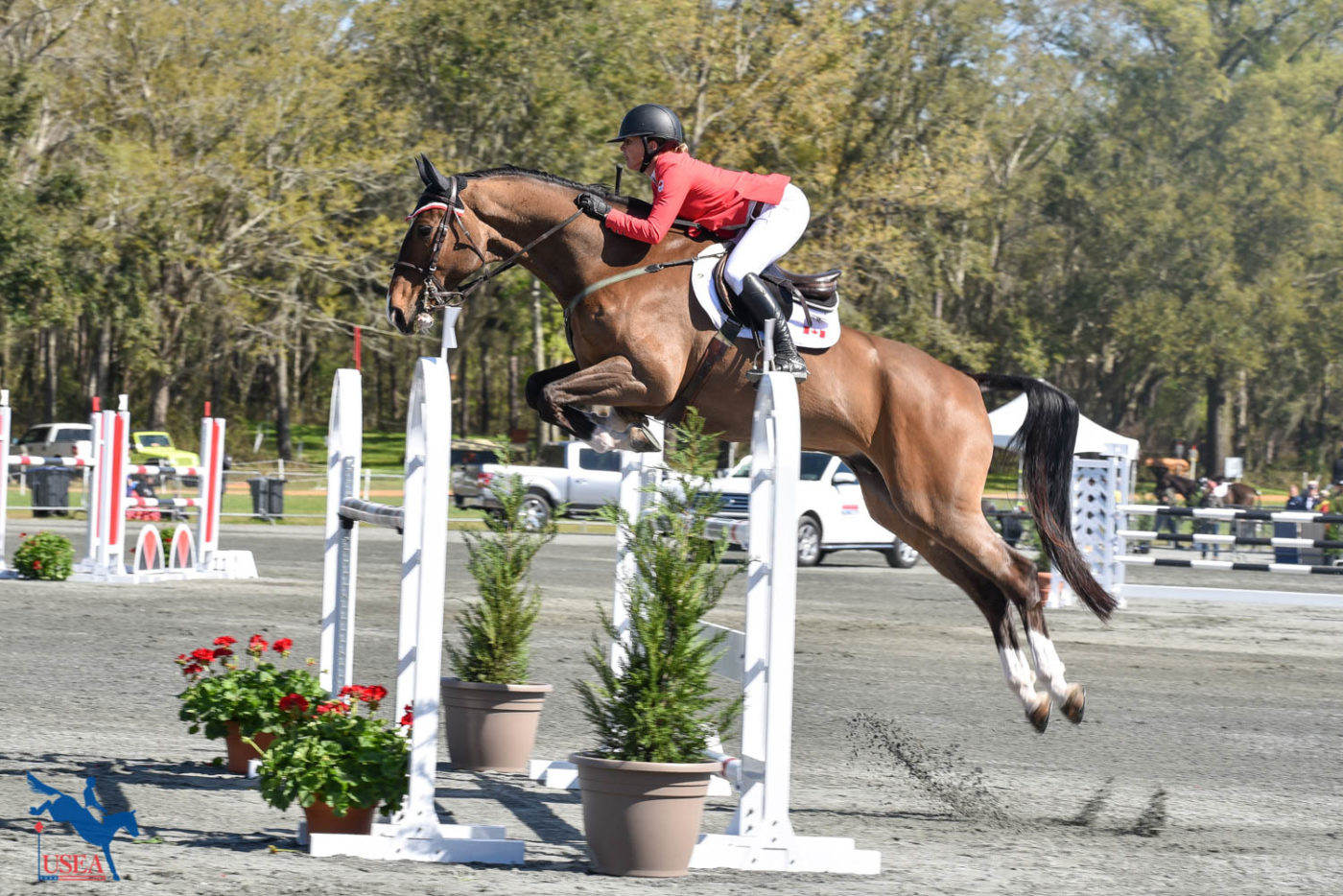 Jessica Phoenix and Watson GS into 8th in the CCI4*-S. USEA/Kate Lokey photo.