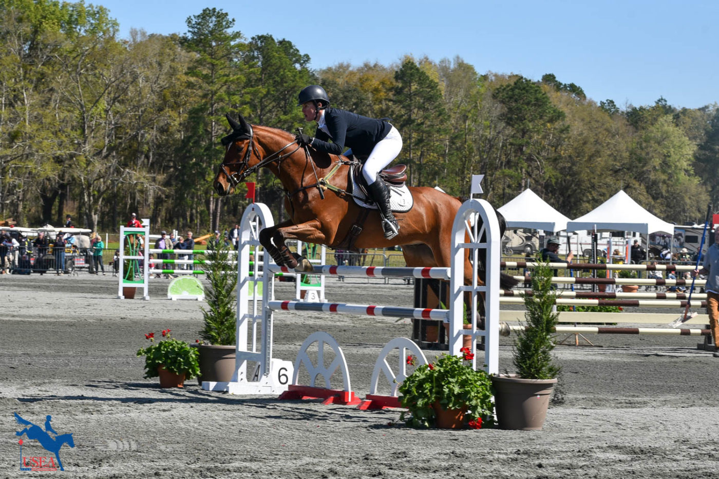 Maya Black and Miks Master C take 9th in the CCI4*-S. USEA/Kate Lokey photo.