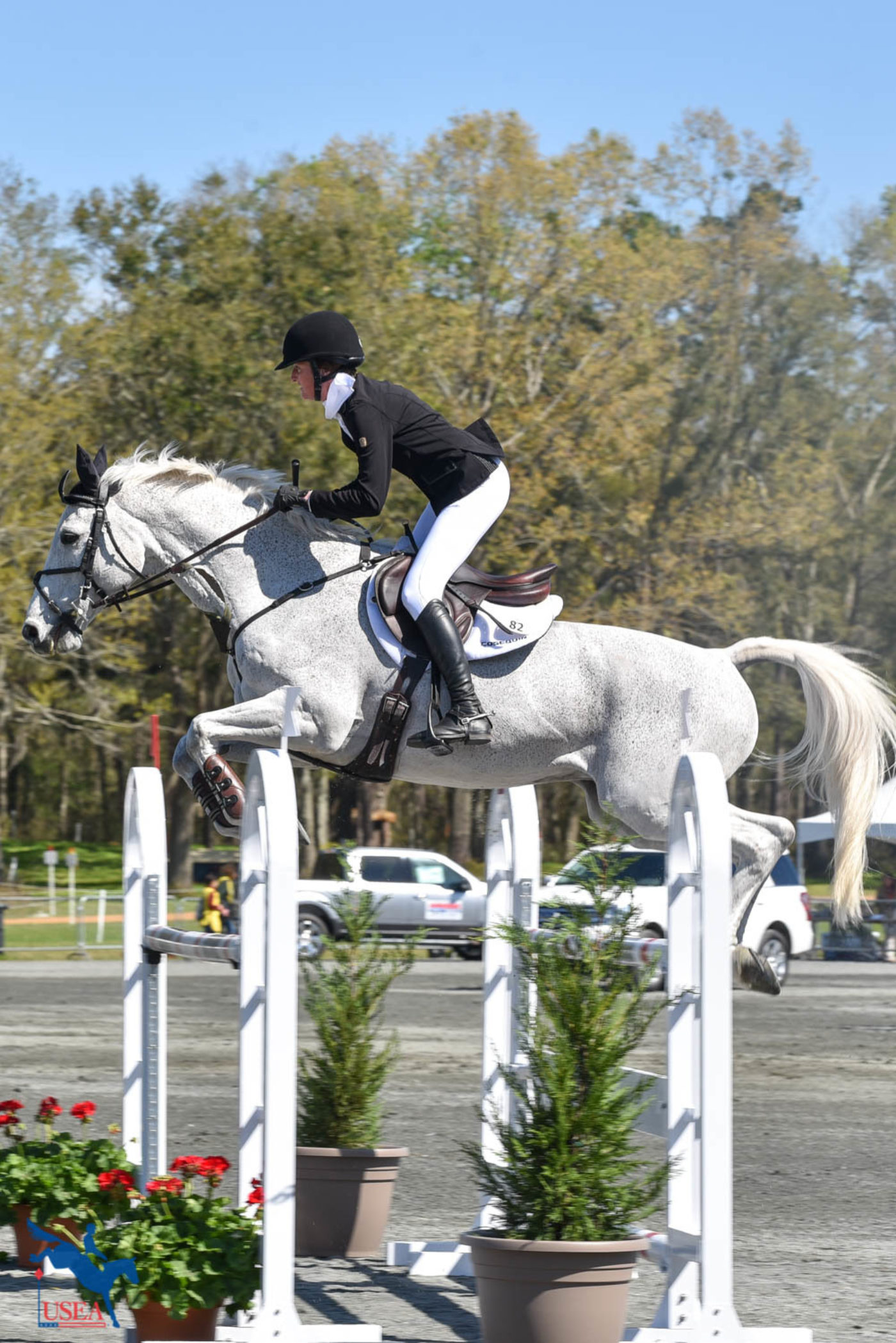 Emily Hamel drives Corvett into 7th place in the CCI4*-S. USEA/Kate Lokey photo.
