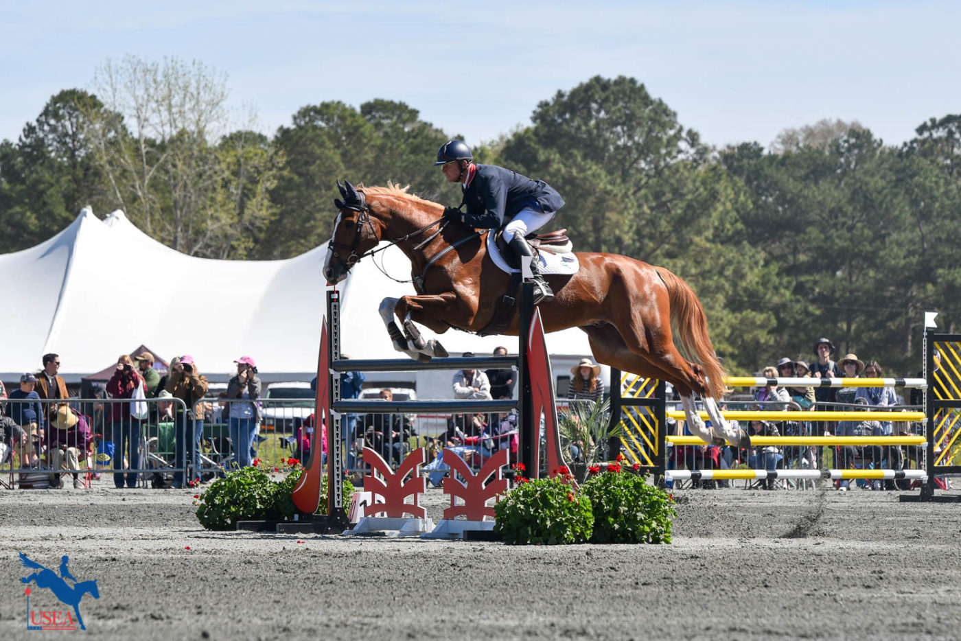 Leslie Law and Voltaire De Tre move up to take 2nd place in the CCI4*-S. USEA/Kate Lokey photo.