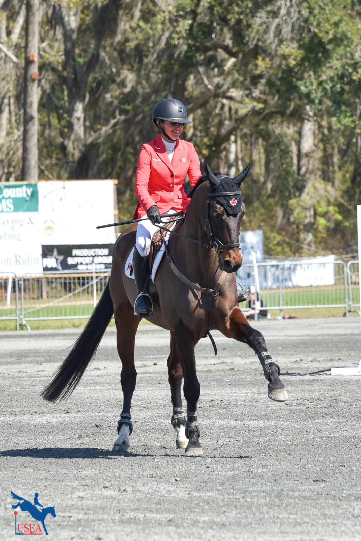 Pavarotti stands and waves to the crowd. 6th place in the CCI4*-S. USEA/Kate Lokey photo.