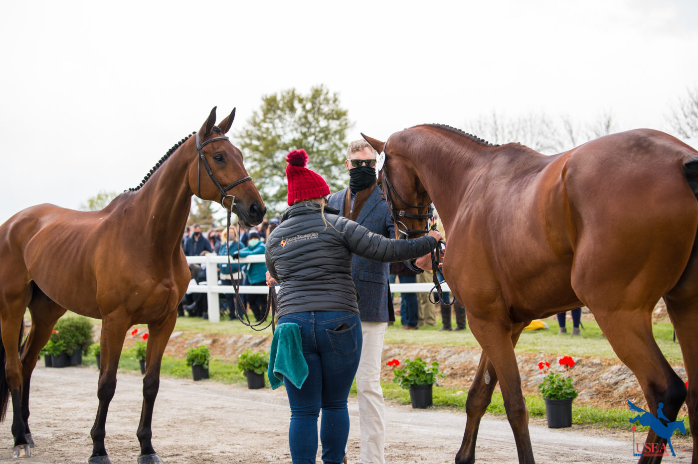 Doug Payne swapping horses with his groom, Courtney Carson. Erin Gilmore photo.