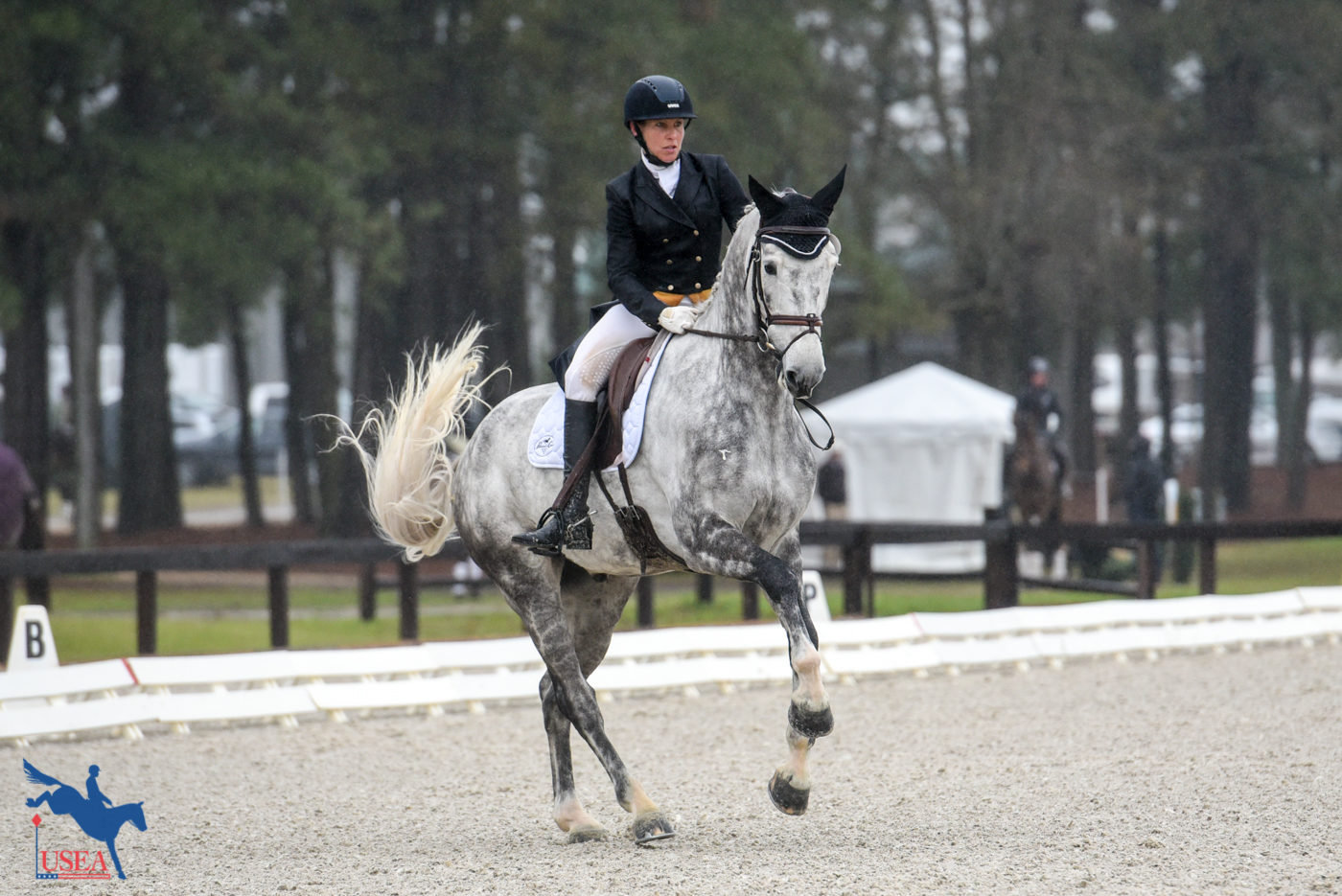 12th - Liz Halliday-Sharp and Cooley Quicksilver - 34.10