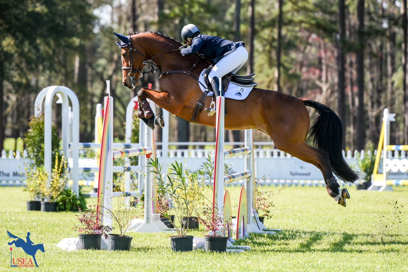 3* - 8th - Sinead Halpin and Cutty Sark