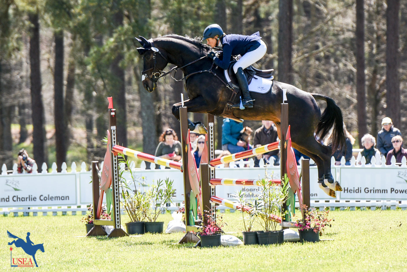 4* - 1st - Liz Halliday-Sharp and Fernhill By Night