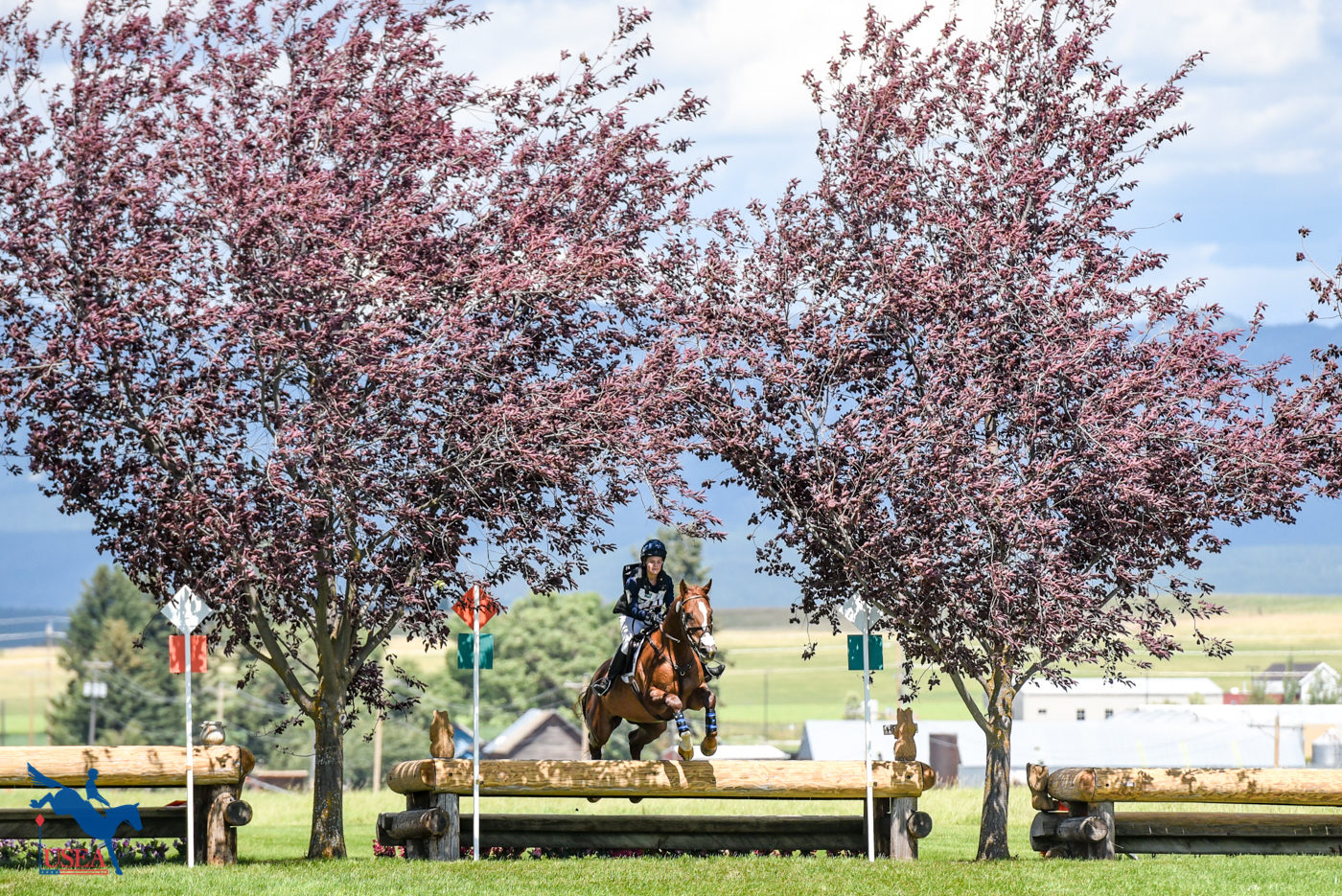 Framed by the trees. USEA/Leslie Mintz Photo.