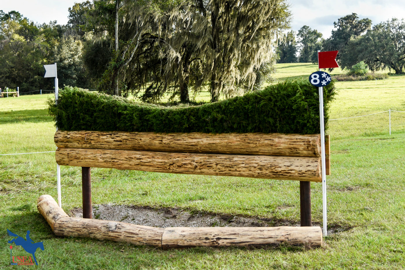 CCI - 8 - Ditch with Hedge