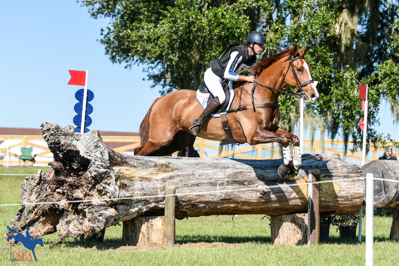 CCI3* - 6th - Alexis Helffrich and London Town