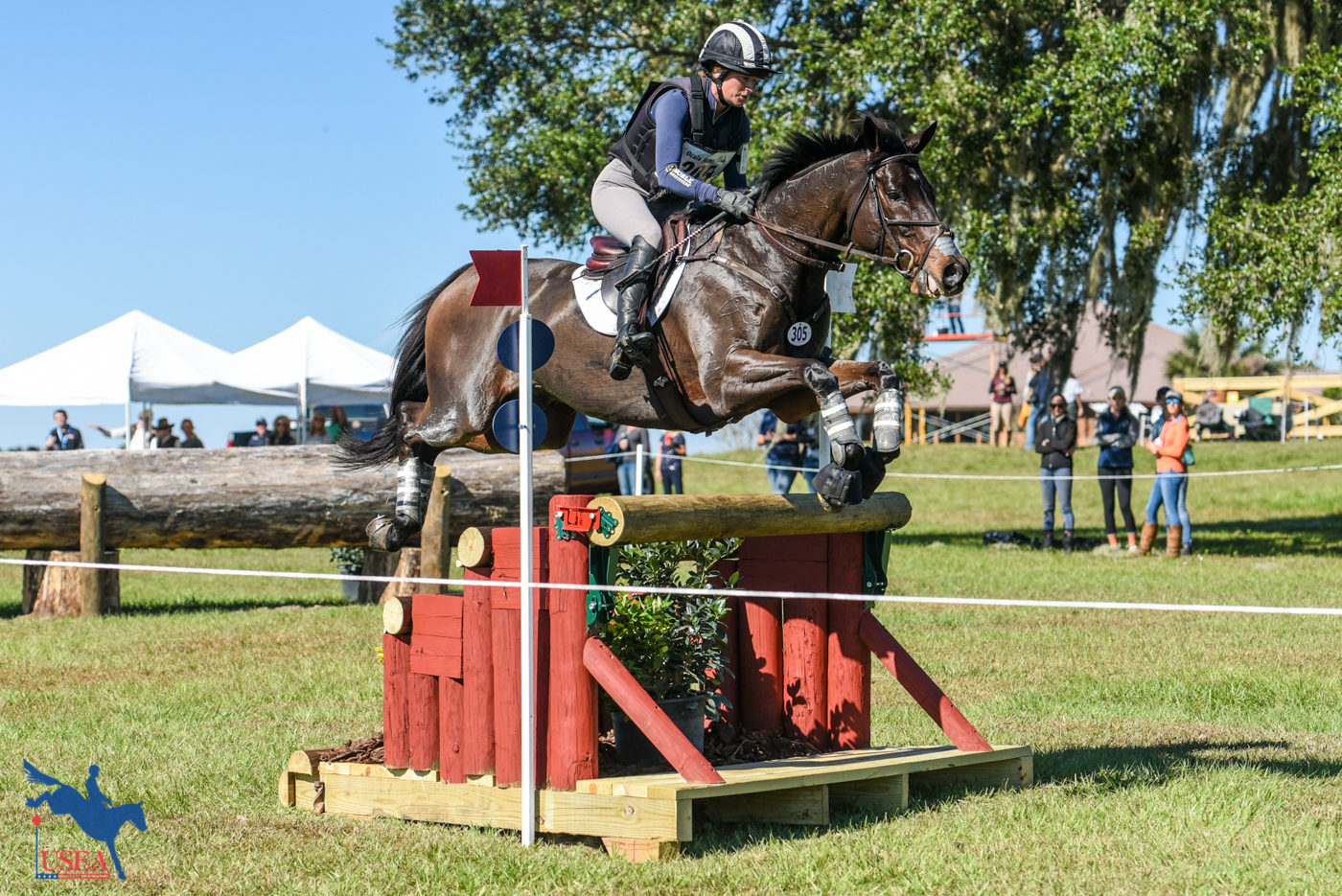 CCI3* - 4th - Erin Sylvester and Paddy The Caddy