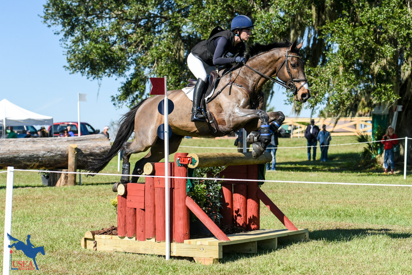 CCI3* - 5th - Hallie Coon and Lansdowne