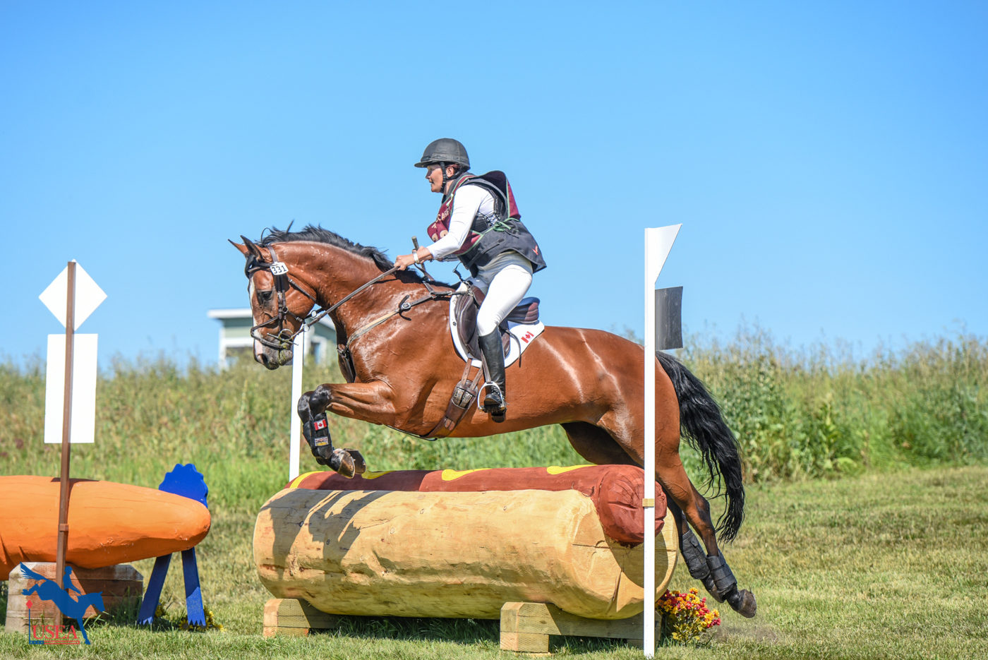 A hot dog is the perfect cross-country jump shape. USEA/Leslie Mintz Photo.