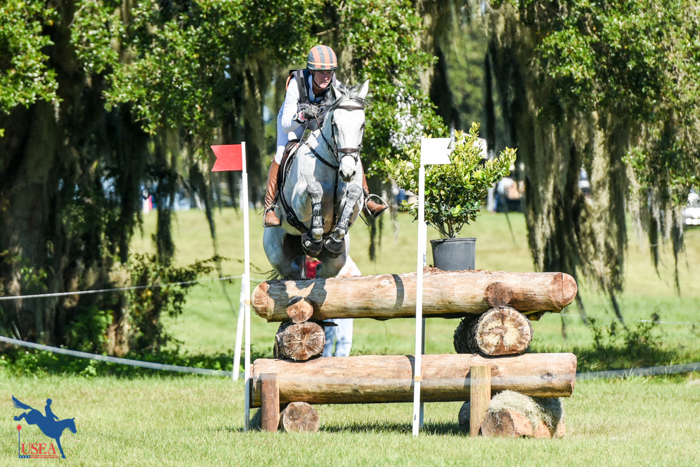 CCI3* - 2nd - Lauren Kieffer and Paramount Importance