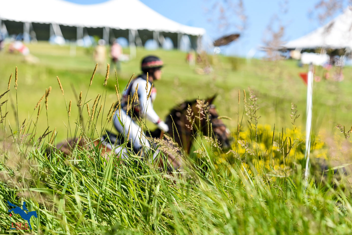 Galloping through the fields. USEA/Leslie Mintz Photo.