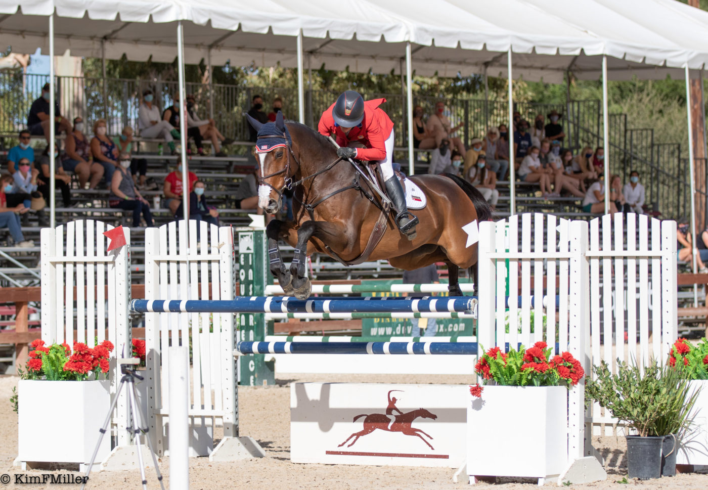 CCI4*-L - 2nd - Tamie Smith and Passepartout