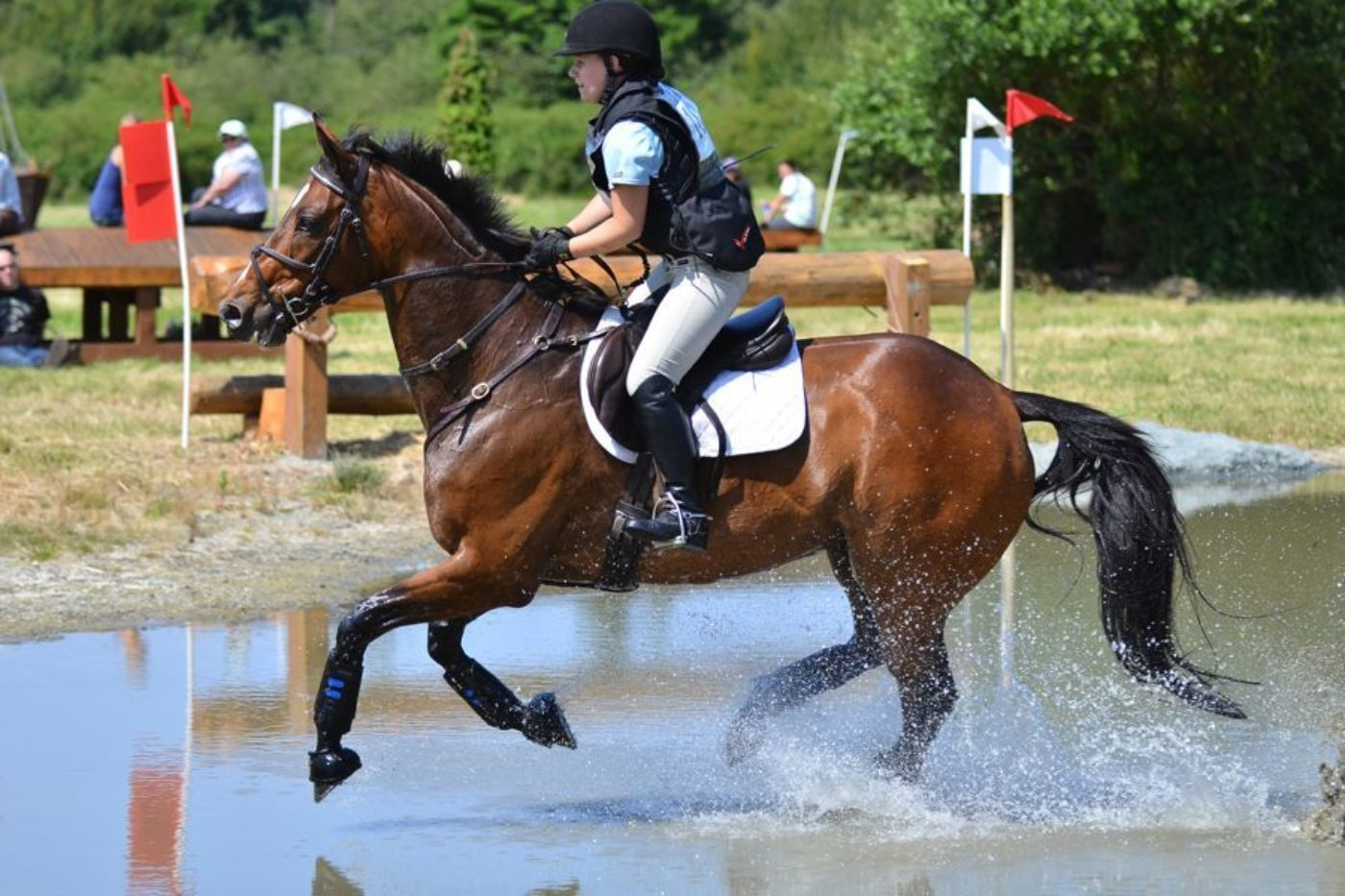 USEA Events A-Z: Whidbey Island Horse Trials