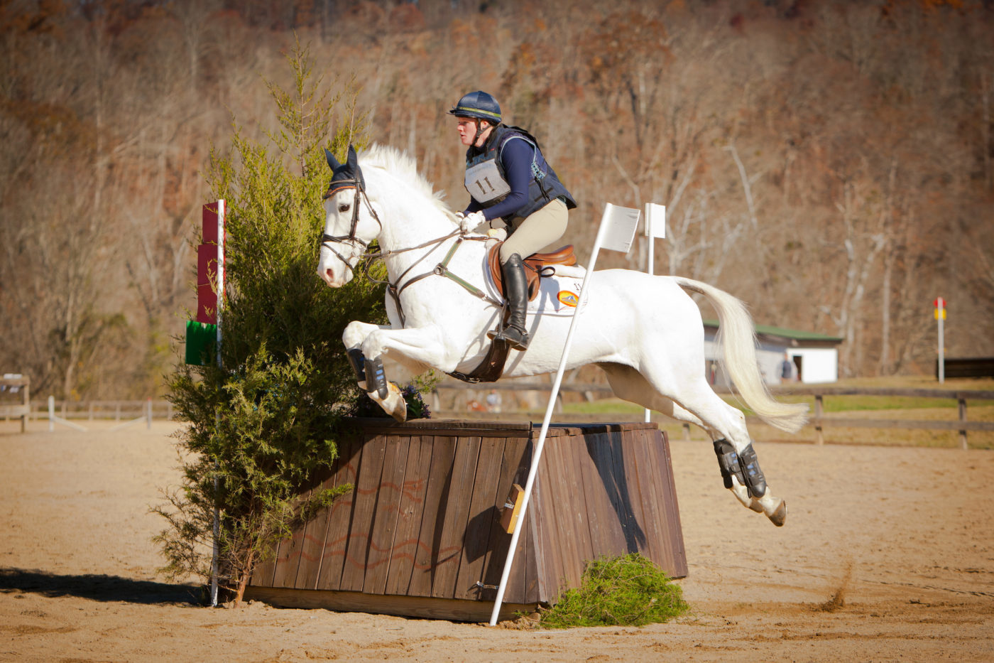 10th - Sharon White and Cooley On Show - 48.6